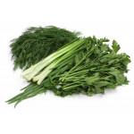 Набор зелени: лук, укроп, петрушка
