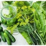 Зелень для засолки: листья хрена, смородины, зонтики укропа