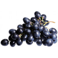 Виноград чёрный Молдова