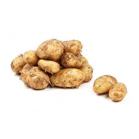 Картофель белый Азербайджан н/у