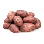 Картофель красный Краснодар